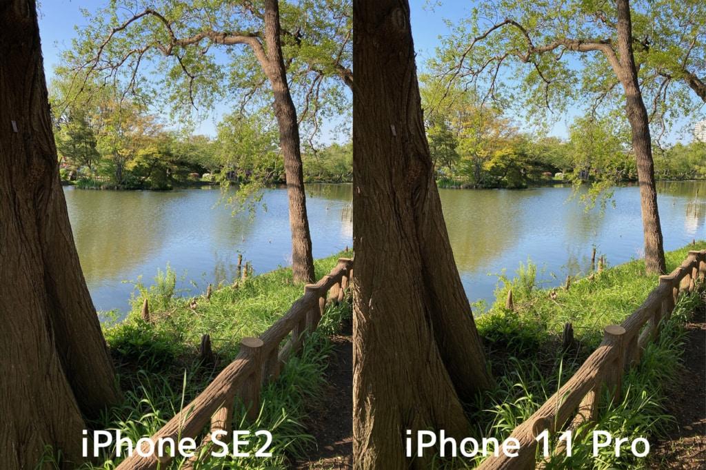 新型iPhone SE(第2世代)とiPhone 11 Proで撮影した写真