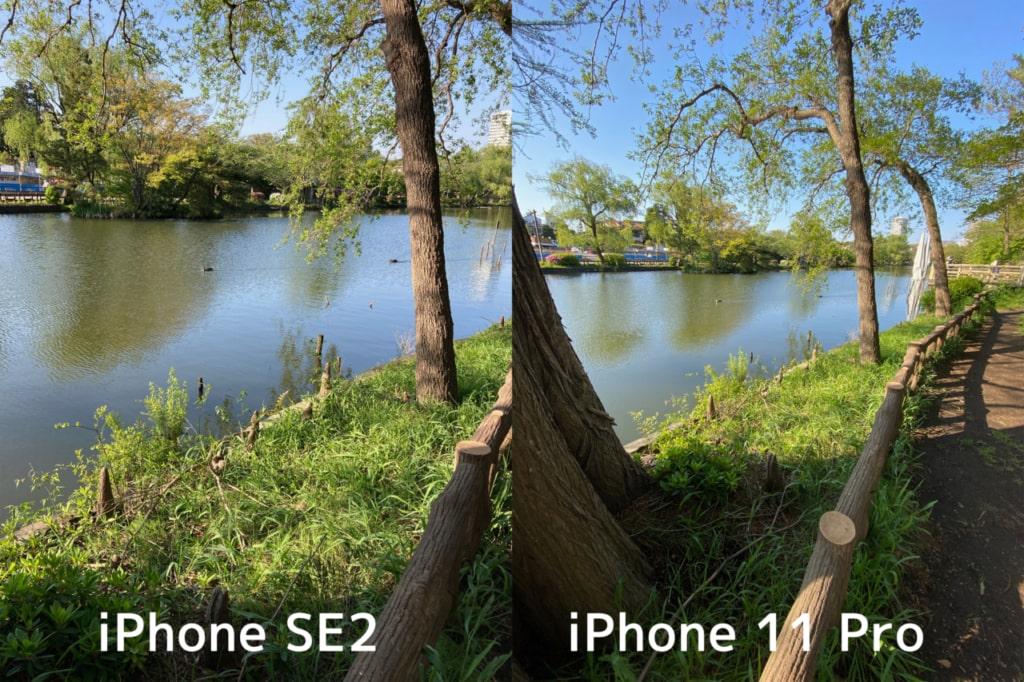 iPhone 11 Proには超広角レンズが
